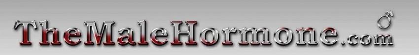 Dizajn loga za web stranicu